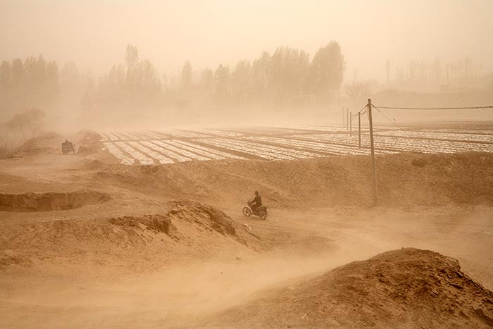 beitrag-084-01-chinese-dustbowl