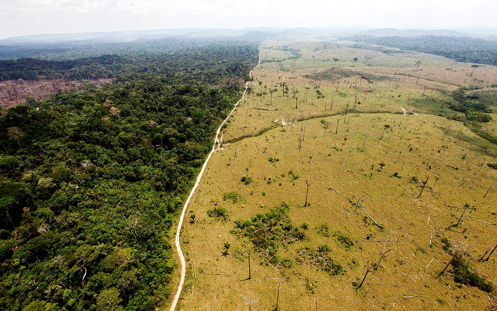 FILE - This Sept. 15, 2009 file photo shows a deforested area near Novo Progresso in Brazil's northern state of Para. Brazil detained a land-grabber in Para state thought to be the Amazon's single biggest deforester, according to the country's environmental protection agency. The Brazilian Institute of Environment and Renewable Natural Resources said Ezequiel Antonio Castanha, detained Saturday, Feb. 21, 2015, operated a network that illegally seized federal lands, clear-cut them and sold them to cattle grazers. (AP Photo/Andre Penner, File)